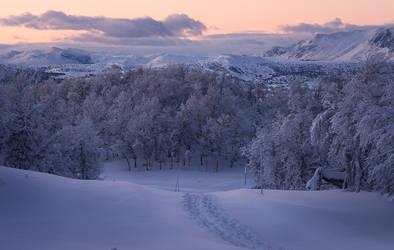 Winterland 2 by oprust