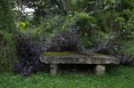 Mossy bench stock