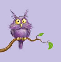 owl by aravana