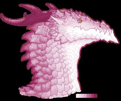 No named dragon