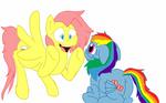 Flutterdash and Rainbow Shy