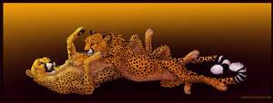 Cuddly Cheetahs