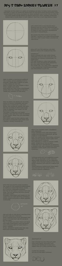 Tutorial: Snow Leopard Head #1