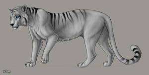 Nerovah: Tiger Design