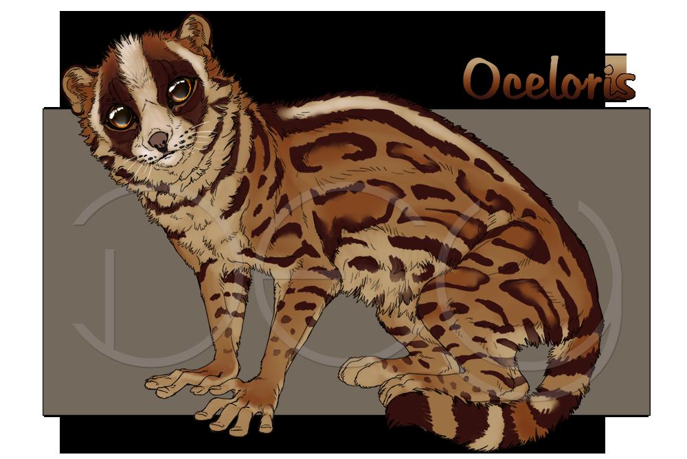 Oceloris - Character Auction ENDING SOON! by DeyVarah