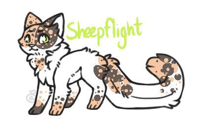 Cat Custom 2