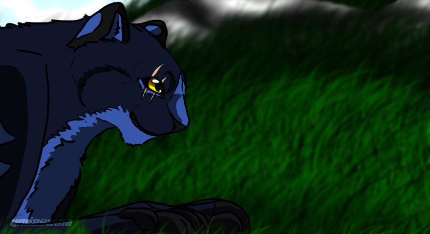 finnaly looks somewhat of a puma by Ymia-the-cheetah