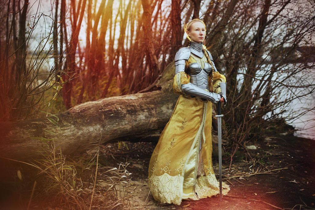Steel Armor Set Queen of the Lake/Bracers/Pauldron