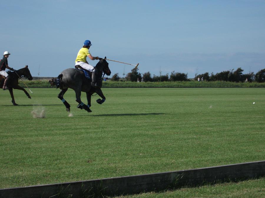 Horse Polo by SuuzMickey