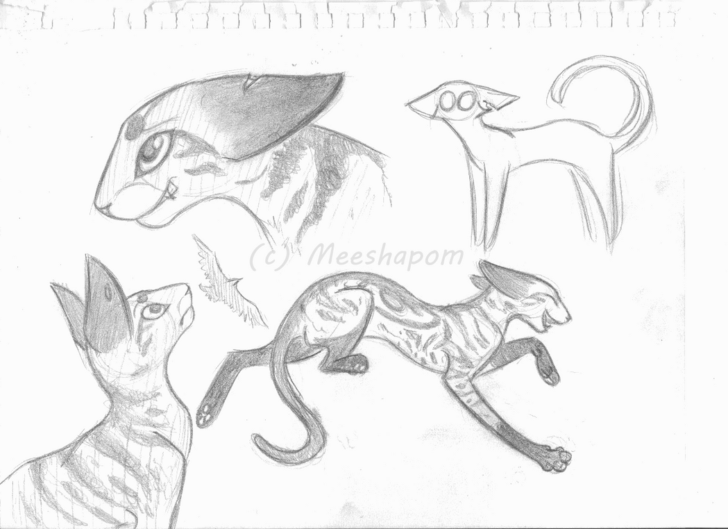 ferrety  ferret McFerret by Sky-Lily