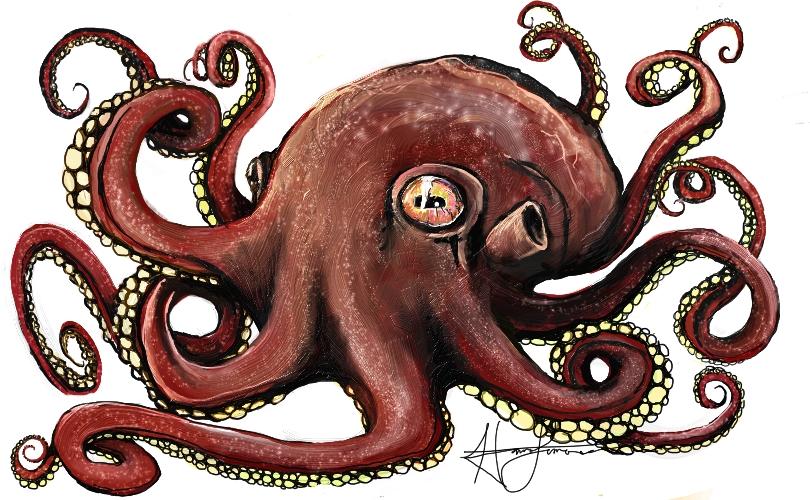Octopus by hannalemoine
