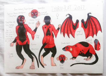 Thorn-Rat reference 2017 by Thorn-rat