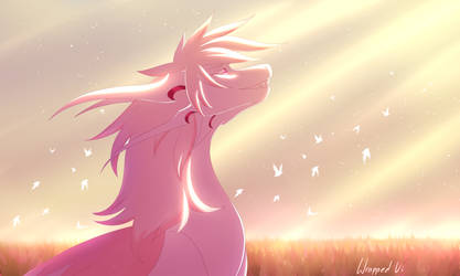 Field of hope by WrappedVi