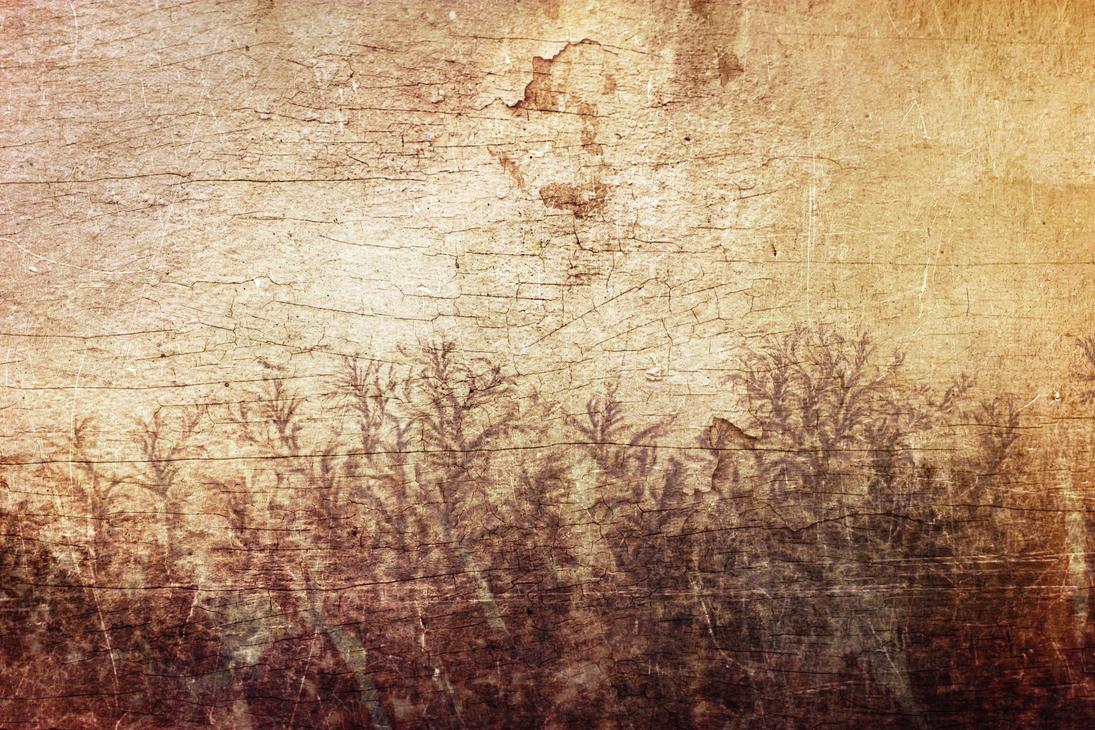 Texture 279 by Sirius-sdz