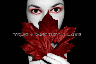 True Patriot Love by The-Beautiful-Sin