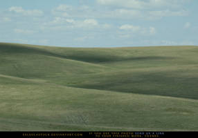 Great Plains by SalsolaStock