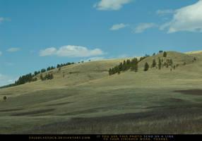 Pine Hills 2 by SalsolaStock
