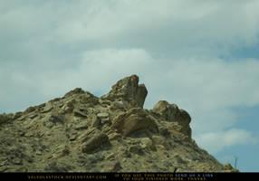 Stone Reach by SalsolaStock