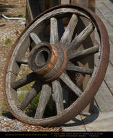 Old Wagon Wheel by SalsolaStock