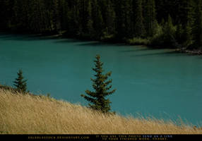 Above The Turquoise River 2 by SalsolaStock