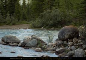 Creekside Boulder 3 by SalsolaStock