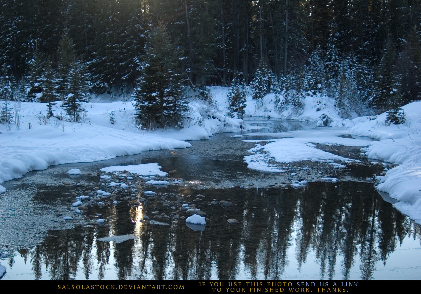Snow Scene 2 by SalsolaStock
