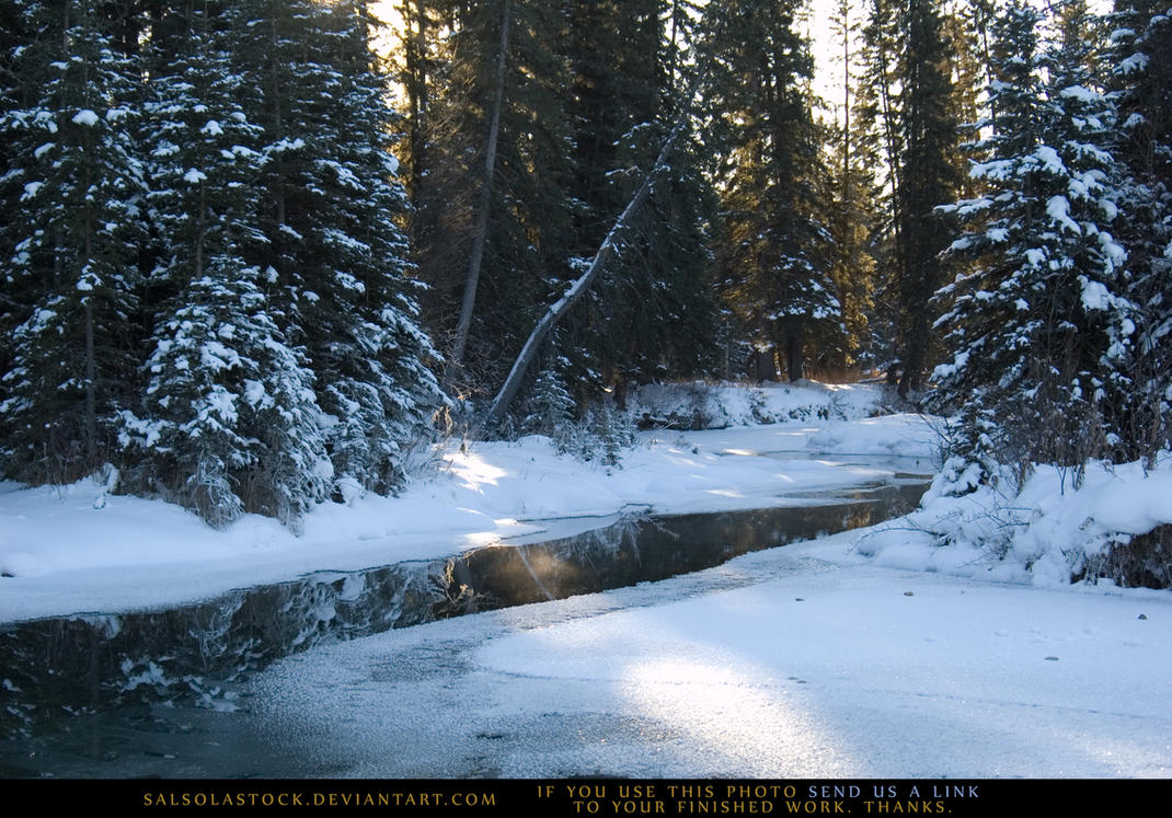 Snow Scene 7 by SalsolaStock