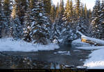 Snow Scene 8
