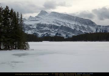 Snow Scene 10 by SalsolaStock