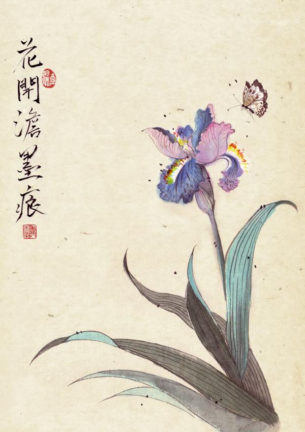 Iris tectorum by 1ran