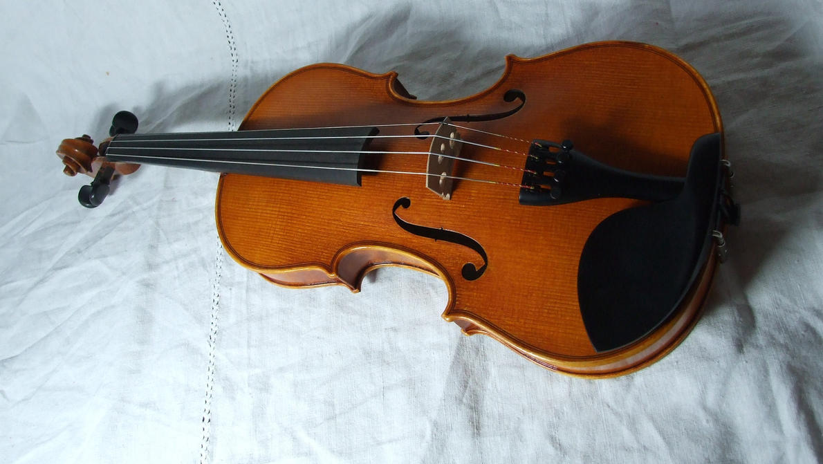 violin 8 by sacral-stock