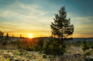 december sunset by artmobe