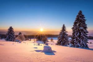 Snowy Land by artmobe