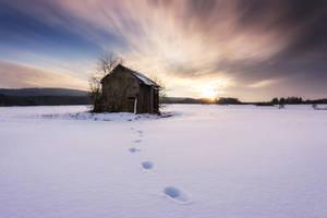 Cottage 7 by artmobe