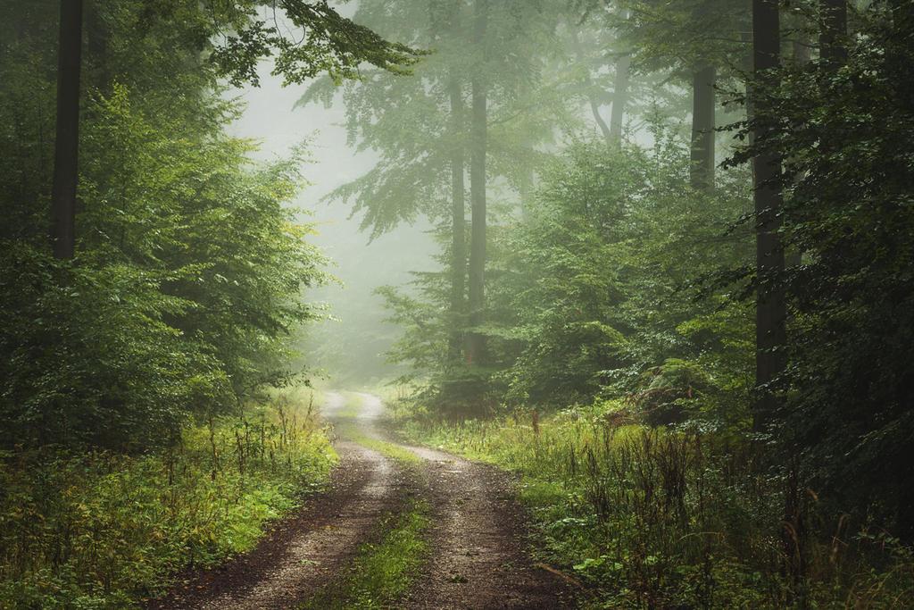 Wanderlust by artmobe