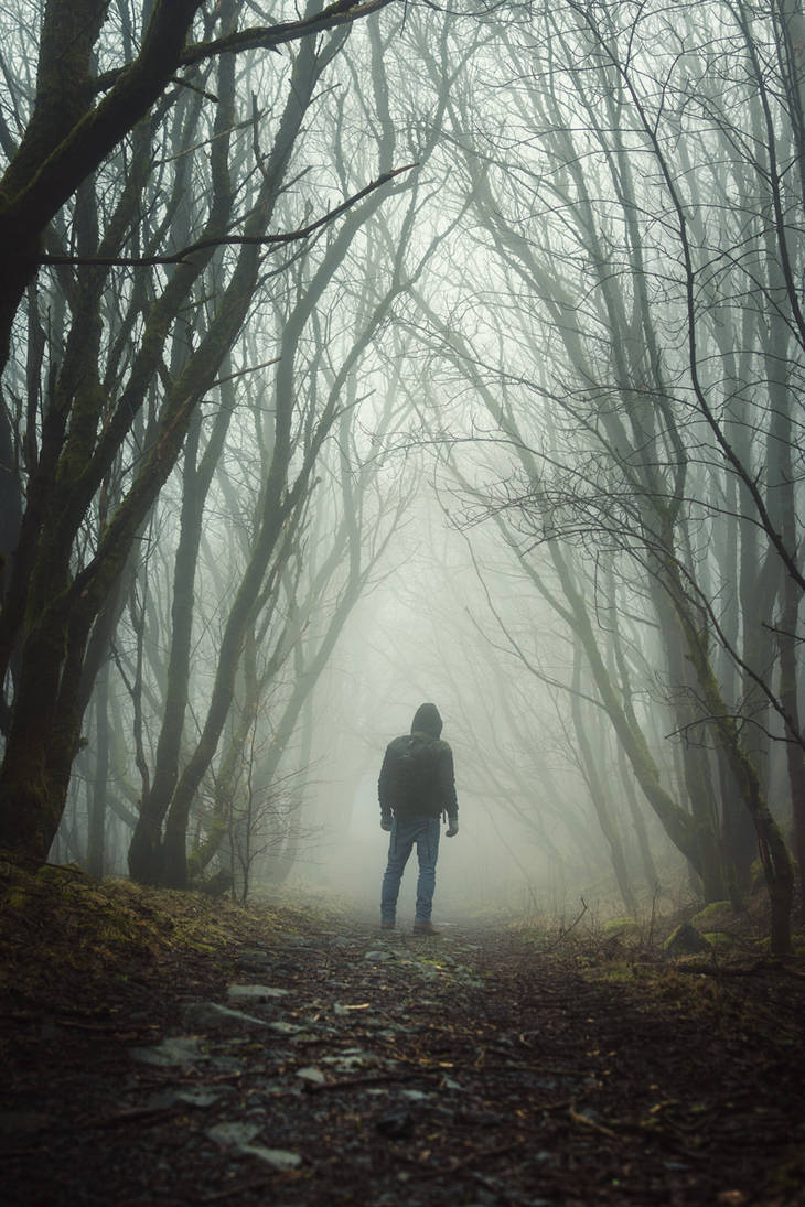 The Fog by artmobe
