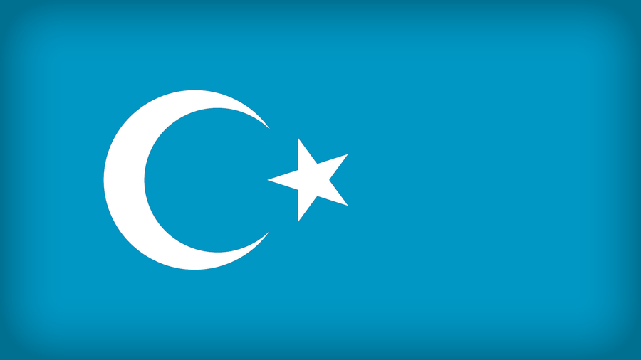Uyghur Republic by Xumarov