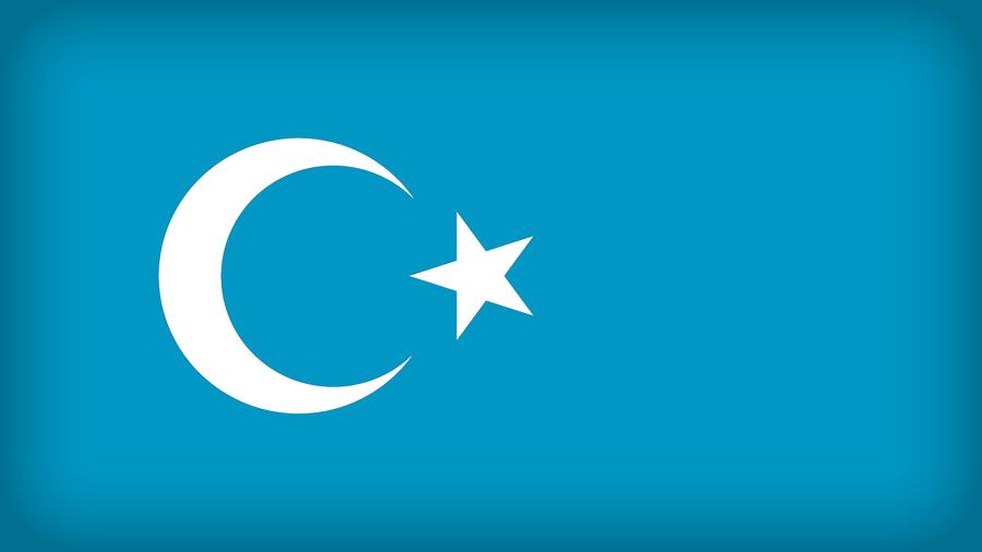 Uyghur Republic by Xumarov