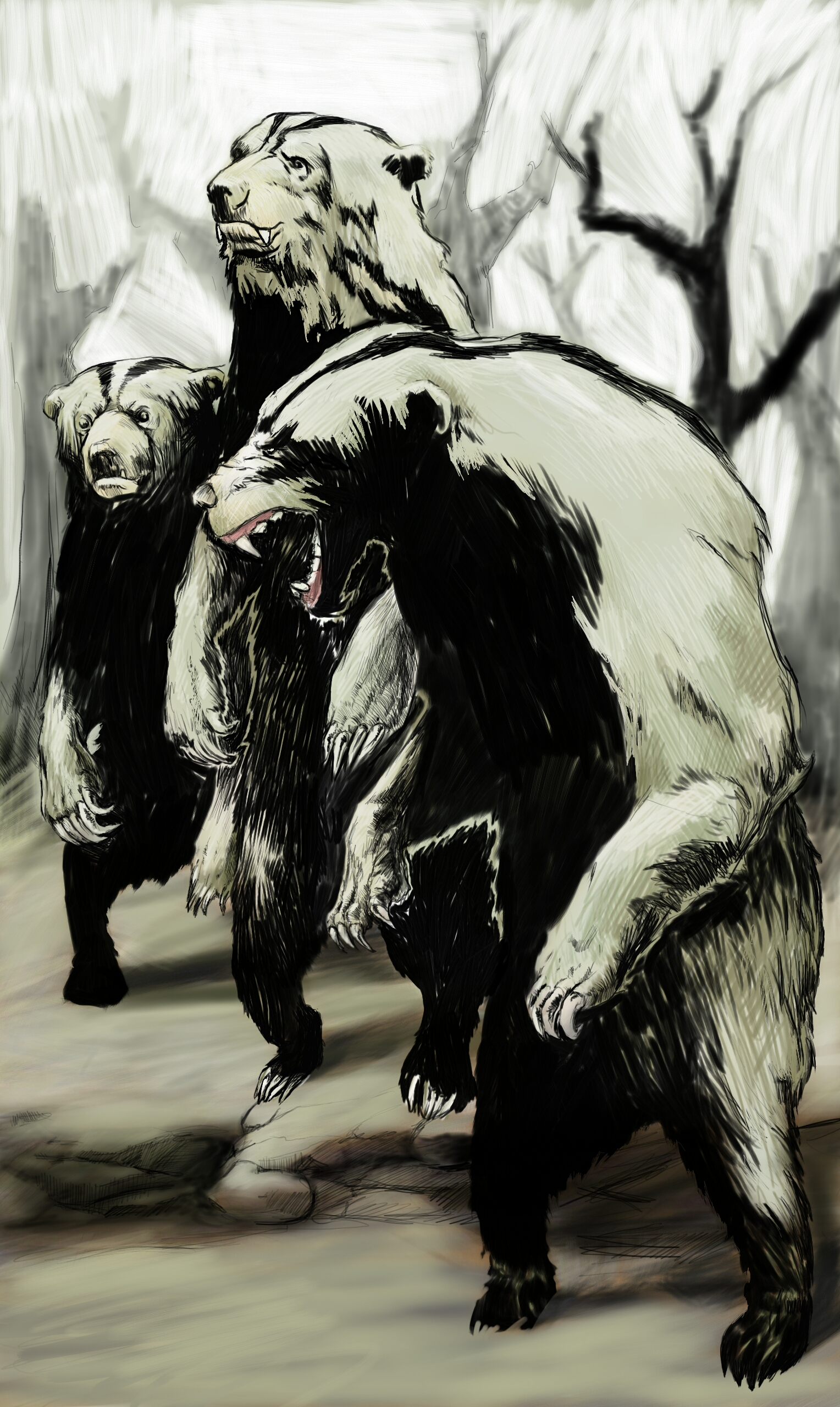 Stink Bears  by killerjello