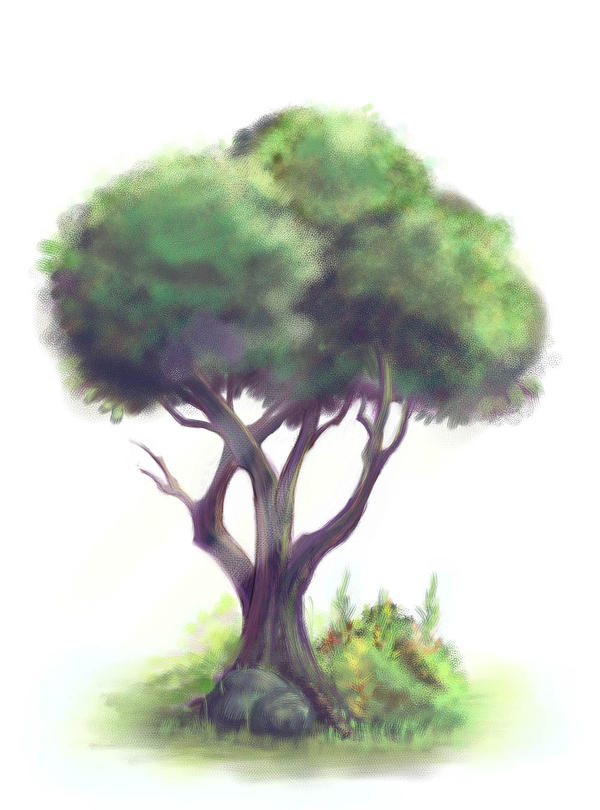 A Tree by aun61