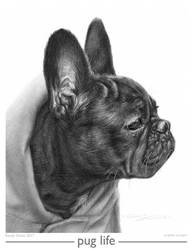 pug life by Randy-man