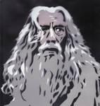 Gandalf the Gray by Ali-Radicali