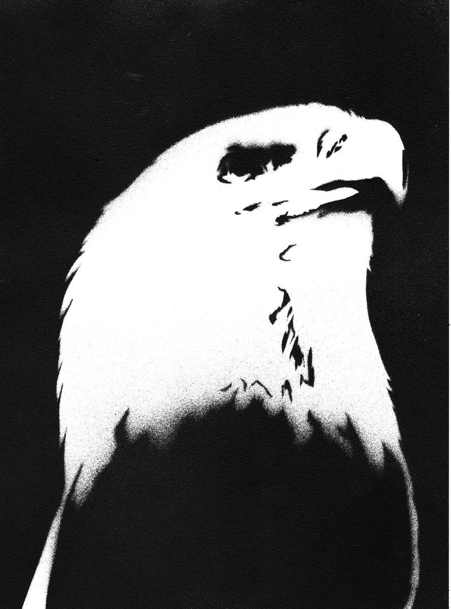 Eagle Feather Stencil http://ali-radicali.deviantart.com/art/Bald ...
