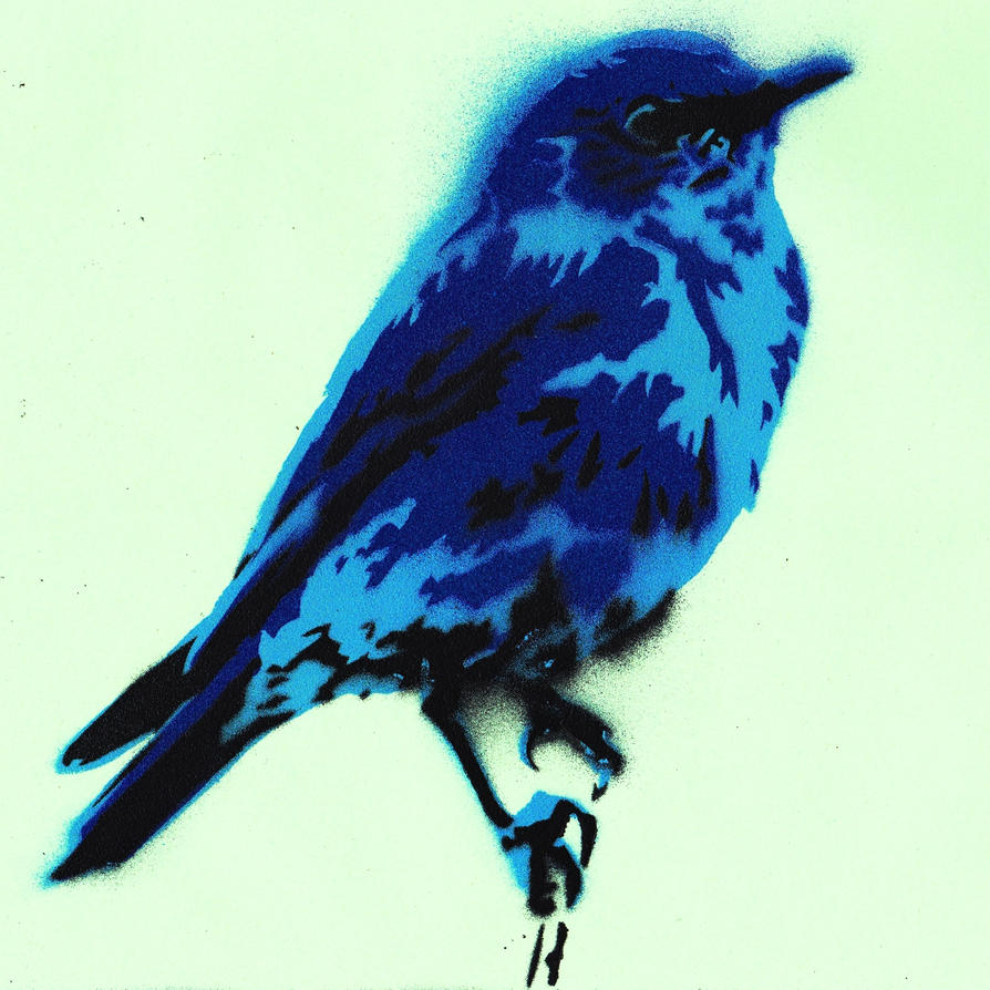 Bluebird 2 by Ali-Radicali