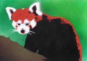 Red Panda by Ali-Radicali