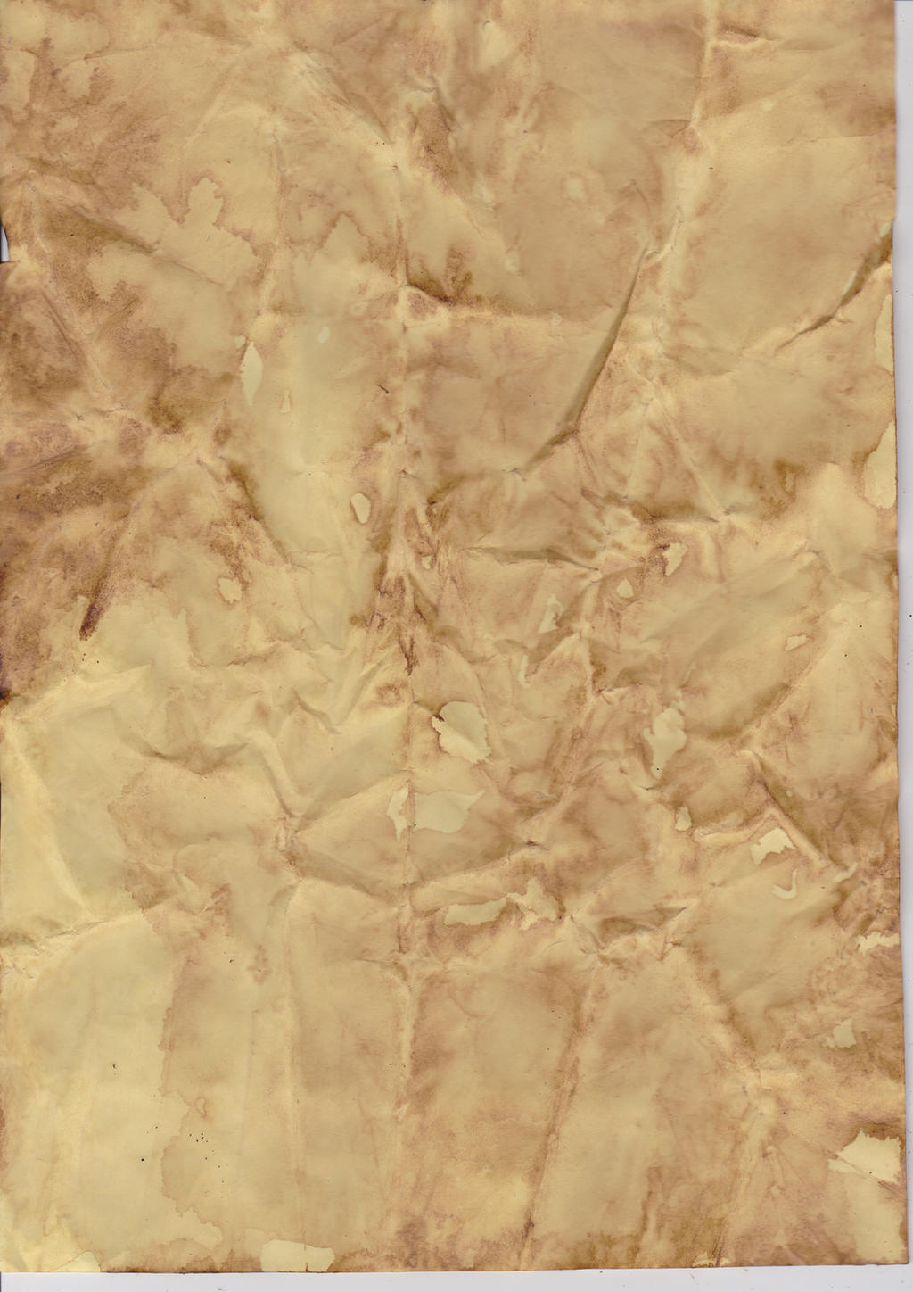 parchment paper where to buy There was a short period during the introduction of printing where parchment and paper were used at the same time, with parchment (in fact vellum.