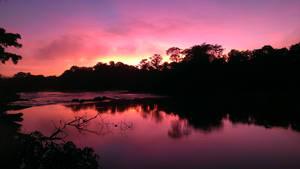 Dazzling Sunrise