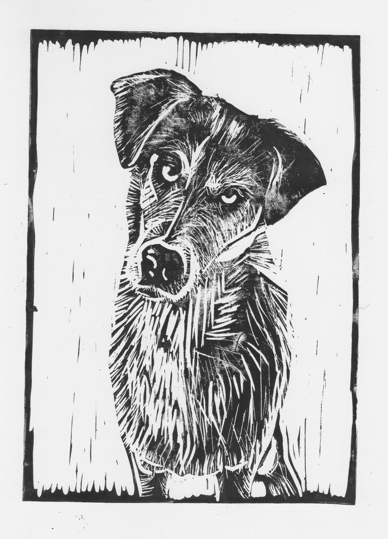 Good boy by Ali-Radicali