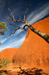 Uluru 3