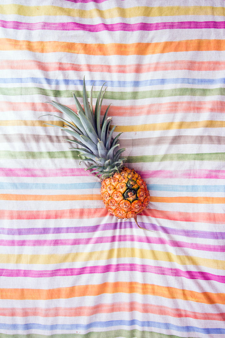 Pineapple 1 by Spanishalex